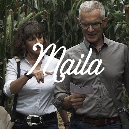 Portfolio Icon des Projekts Maila